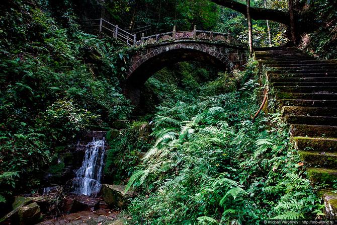 Таинственный парк Аватар
