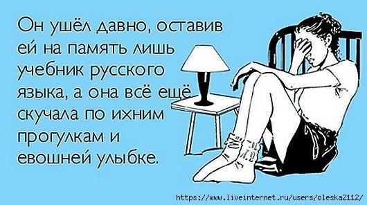 Особенности русского языка в весёлых картинках :-))) истории из жизни